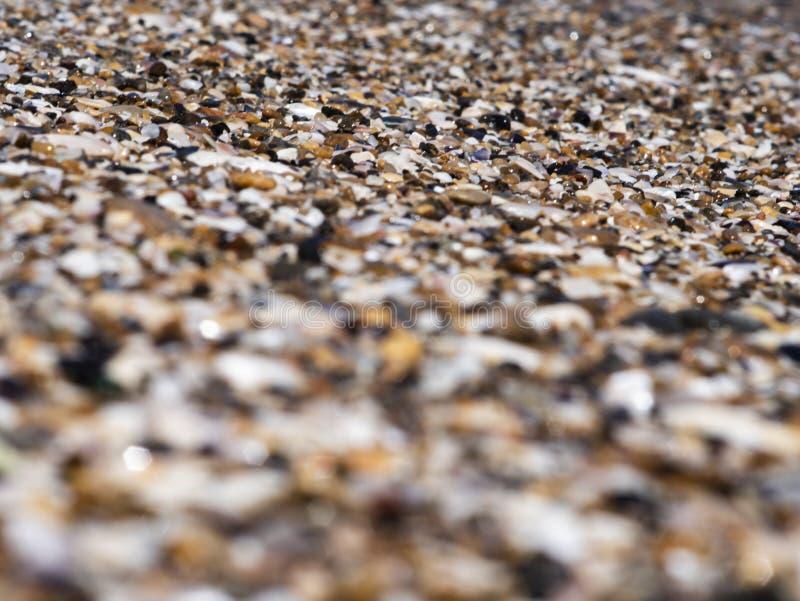 Guijarros del ‹del †del ‹del †del mar y cáscaras y arena Textura Los antecedentes fotos de archivo