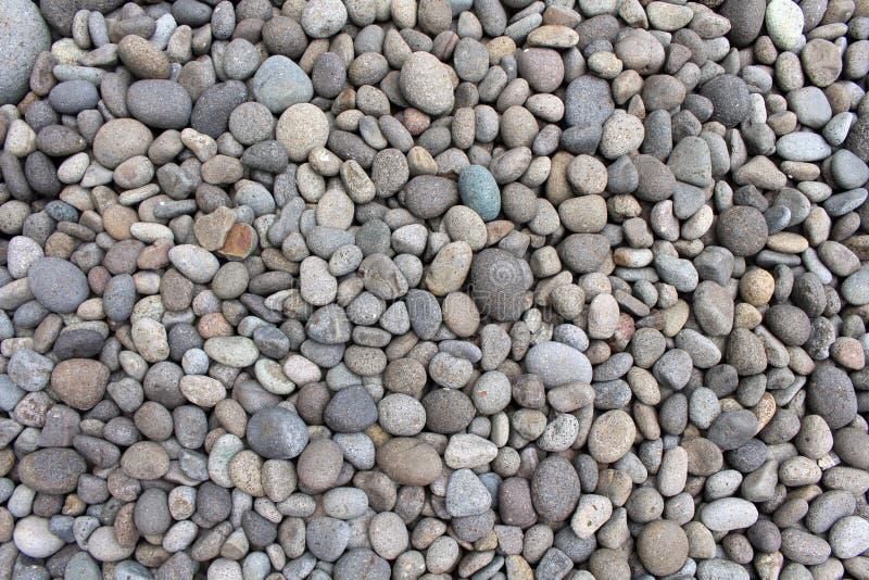 Guijarros, rocas, y piedras como decoración natural en el jardín foto de archivo libre de regalías