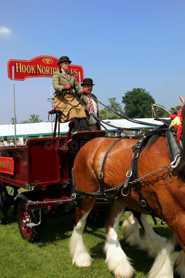 Guildford, England - May 28 2018: Dray or open wooden wagon belonging to Hook Norton Brewery, being pulled by two bay Shire horse. S in traditional leather tack stock photo