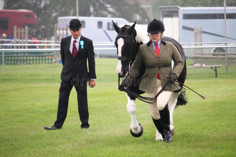 Guildford, England - May 28 2018: Equestrian competitor in a county show, being watched by a critical judge while she runs with h royalty free stock images