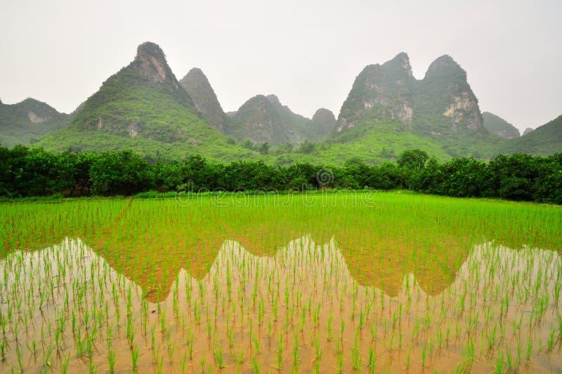 Guilin Li rzeki krajobraz w Yangshuo Chiny zdjęcia royalty free