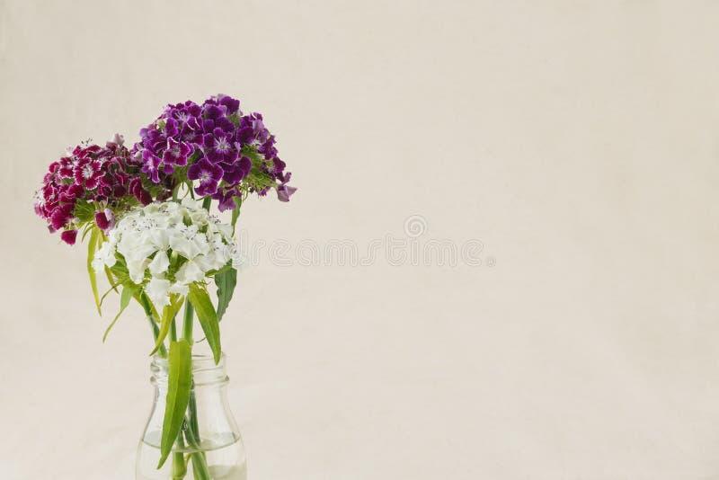 Guillermo dulce colorido florece el ramo fotografía de archivo