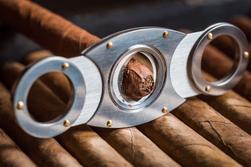 Guillotine, die Zigarrentipp abschneidet stockfotos
