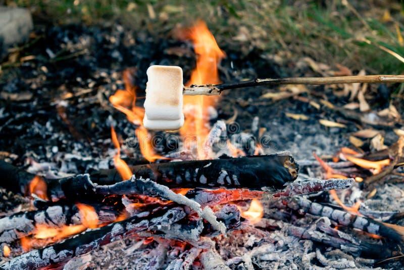 Guimauves délicieuses et douces sur le bâton au-dessus du feu photo libre de droits