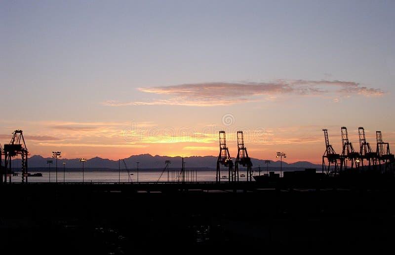 Guindastes de pórtico da carga na margem de Seattle no por do sol imagens de stock royalty free