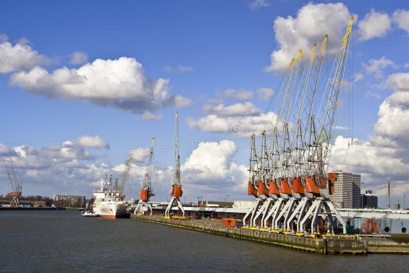 Guindastes do ancoradouro na porta imagem de stock royalty free