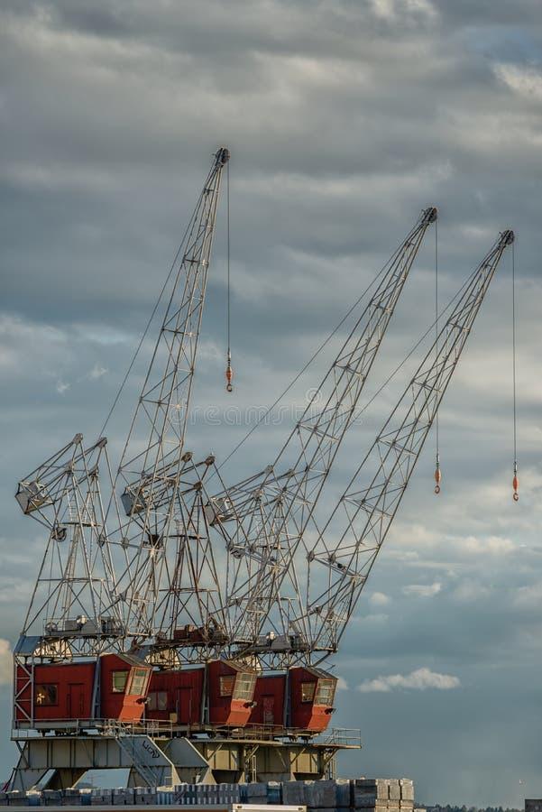 Guindastes industriais da carga na doca fotografia de stock