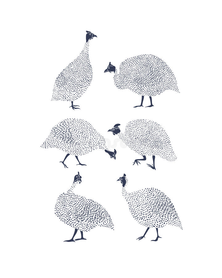 Download Guinea Fowls Illustration Stock Vector - Image: 83703878