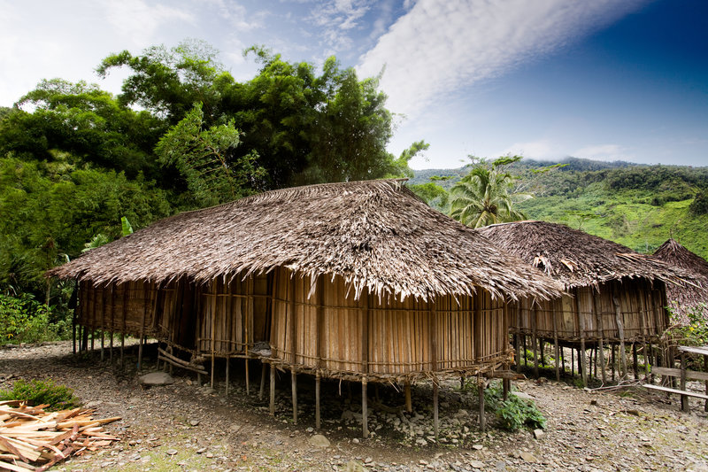 Guinea new. A traditional village hut in Papua, Indonesia stock images