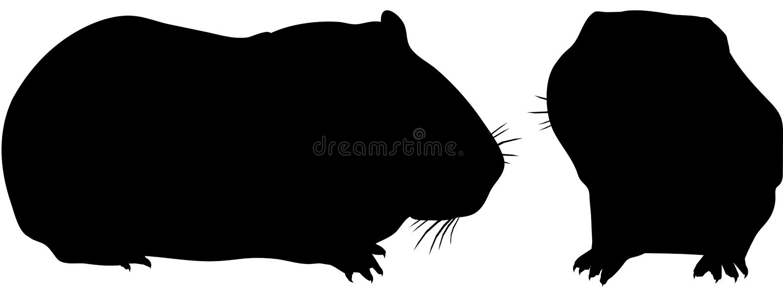 Guinea Pig Cavy Silhouette. Silhouette pair of Guinea Pigs. Domesticated South American Cavy. Belonging to the rodent family Widespread family pets vector illustration