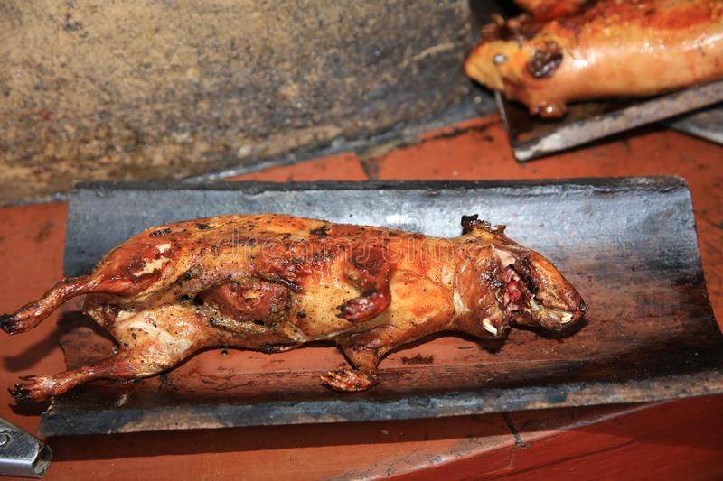 Guinea Pig roasted - traditional Meal in Peru. South America royalty free stock photo