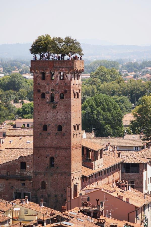 Guinigi Kontrollturm Lucca lizenzfreie stockfotos