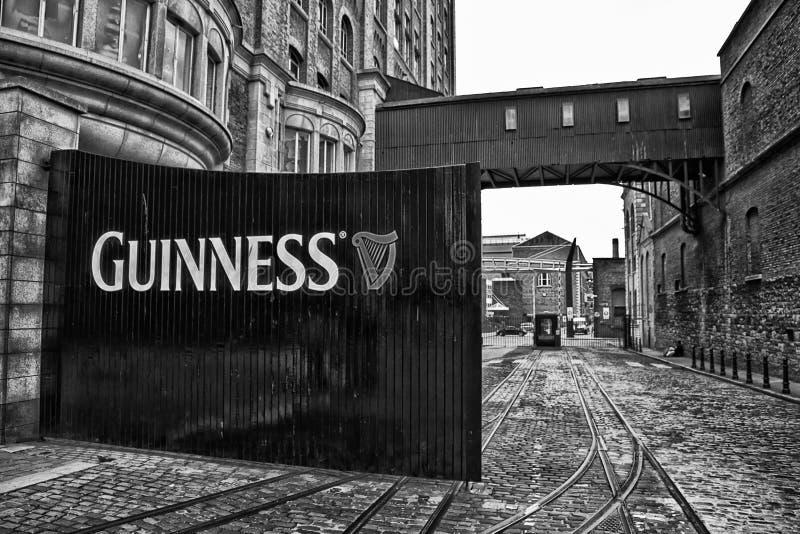 Guinness bloquea B&W imágenes de archivo libres de regalías