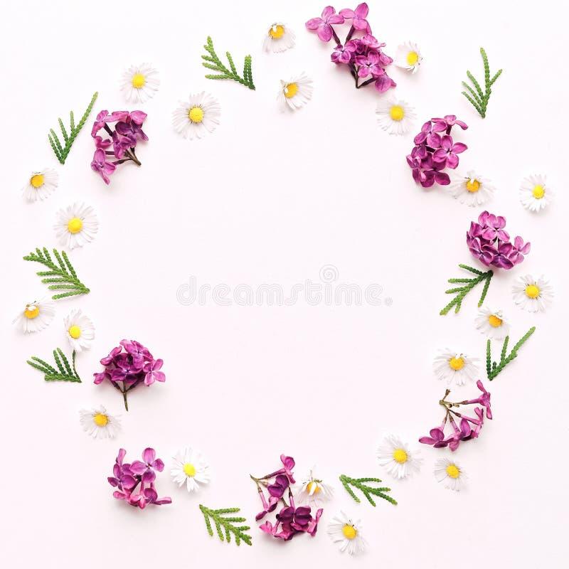 Guirlande avec la marguerite et les fleurs lilas violettes photographie stock