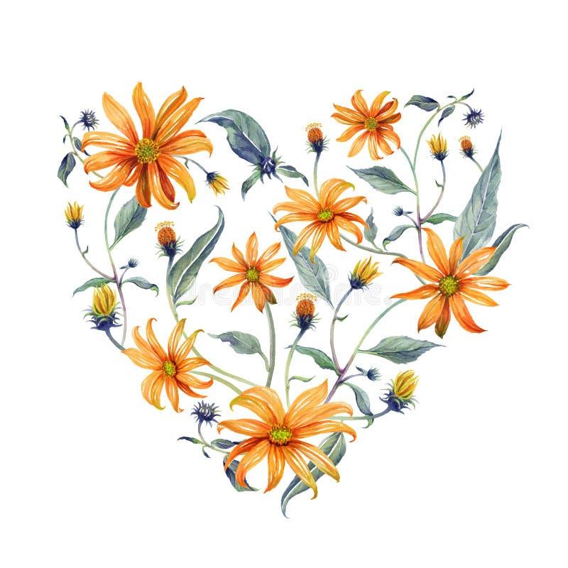Guirlande d'aquarelle en forme de coeur Marguerites oranges illustration de vecteur