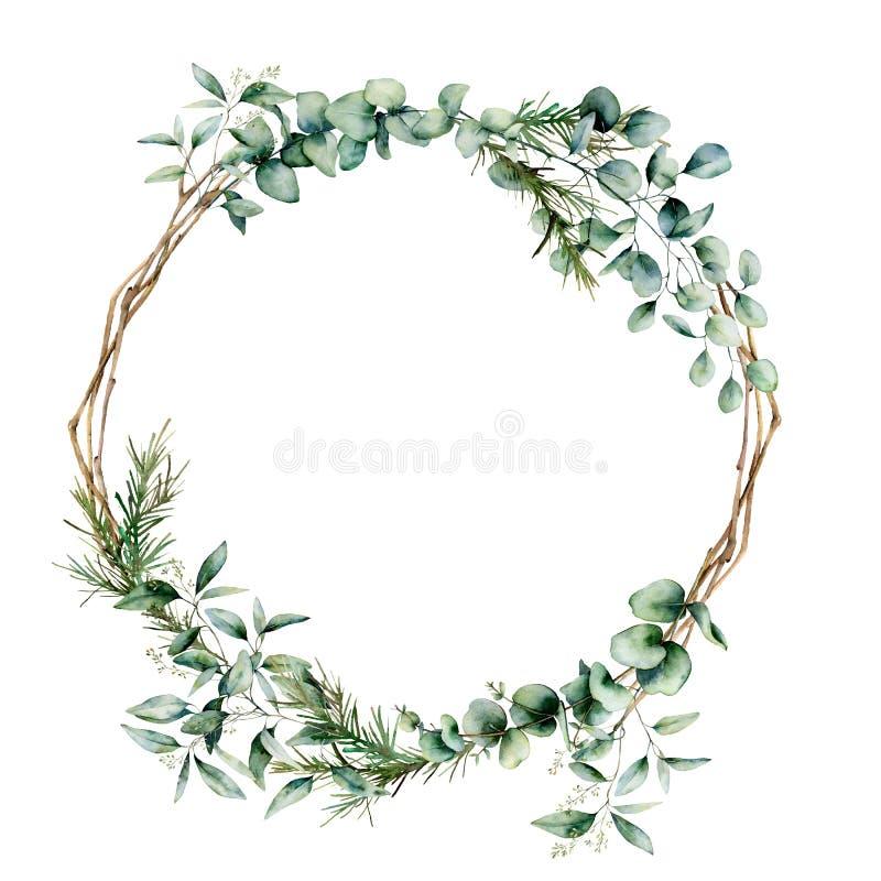 Guirlande de branche d'eucalyptus d'aquarelle Branche peinte ? la main et feuilles d'eucalyptus d'isolement sur le fond blanc flo illustration stock