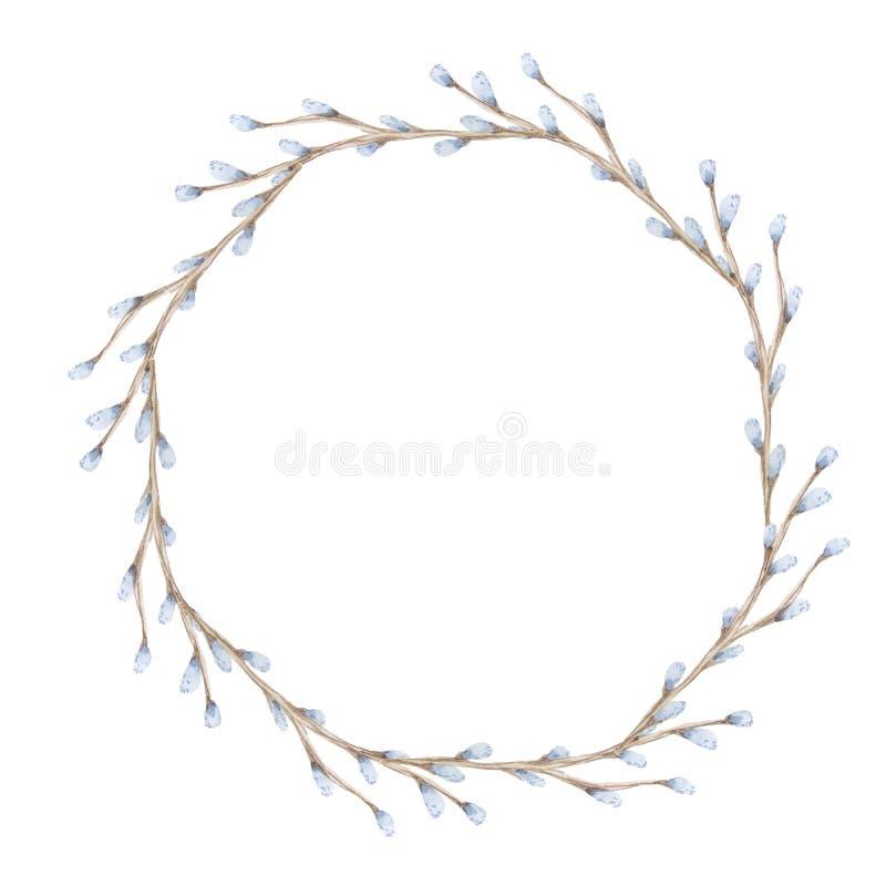 Guirlande de branches de chat-saule d'aquarelle illustration stock