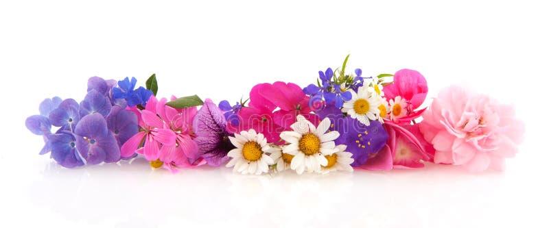 Guirlande de fleur images libres de droits