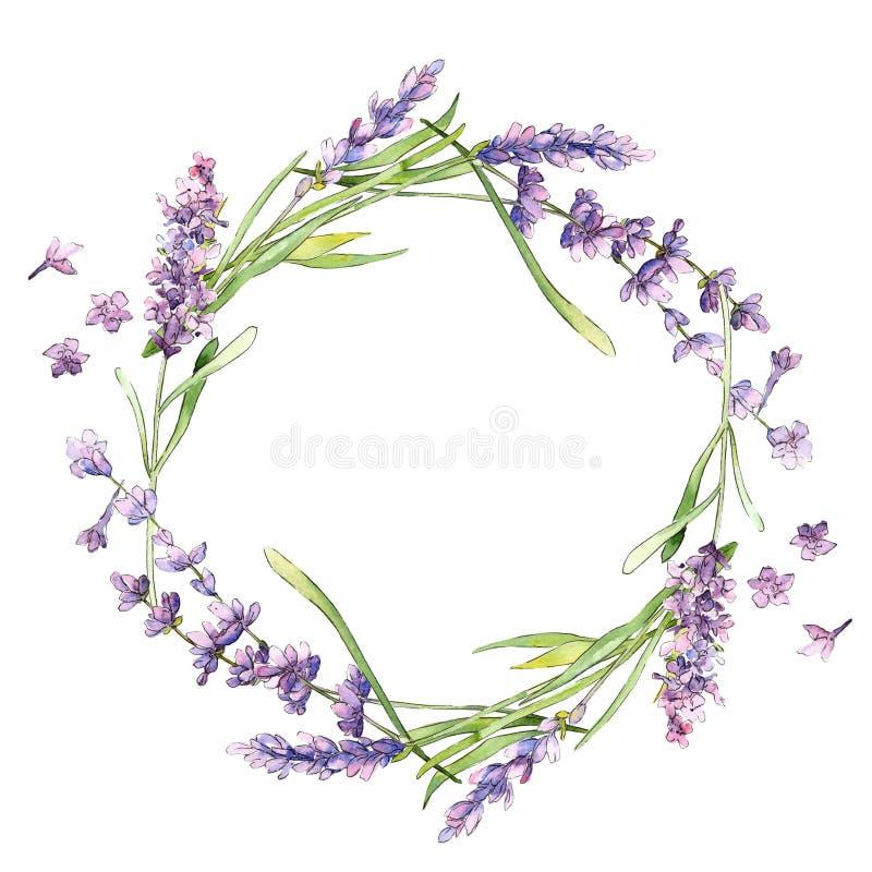 Guirlande de fleur de lavande de Wildflower dans un style d'aquarelle d'isolement illustration stock