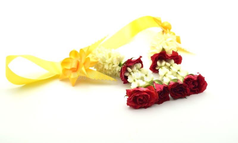 Guirlande de jasmin sur le fond blanc image stock