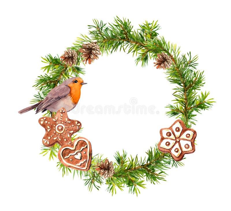 Guirlande de Noël avec les biscuits de gingembre et l'oiseau de merle Aquarelle de Noël - branches d'arbre impeccables, cônes illustration de vecteur