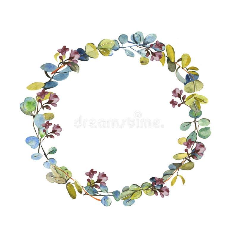 Guirlande de ressort avec des arbres d'eucalyptus d'aquarelle et des fleurs de cerise sur le fond blanc illustration de vecteur