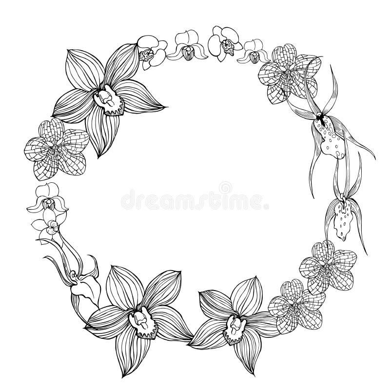 Guirlande florale avec les orchidées tirées par la main Illustrati de croquis de vecteur illustration stock