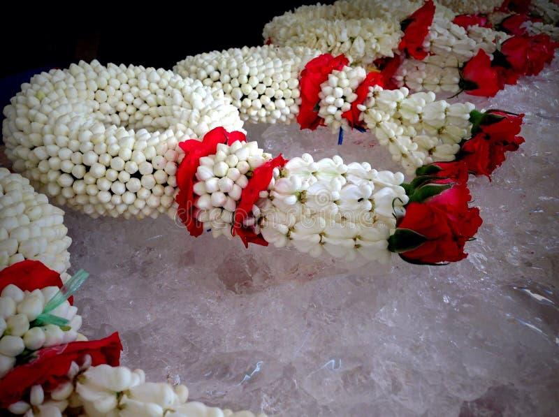 guirlande fraîche de jasmin photos libres de droits