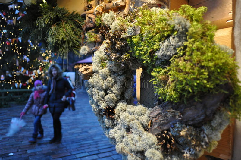 Guirlande organique de décoration de Noël photo libre de droits