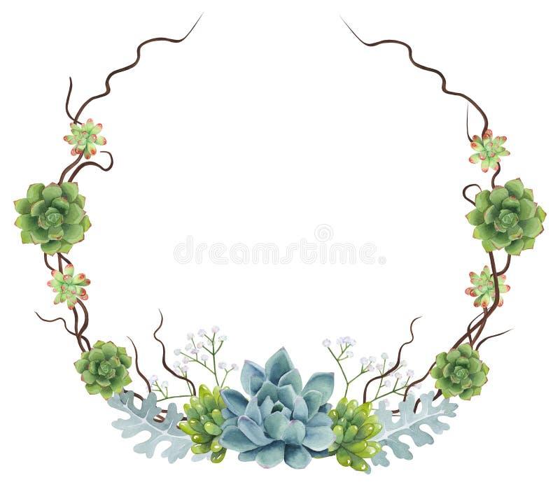 Guirlande peinte à la main de Succulents d'aquarelle illustration stock