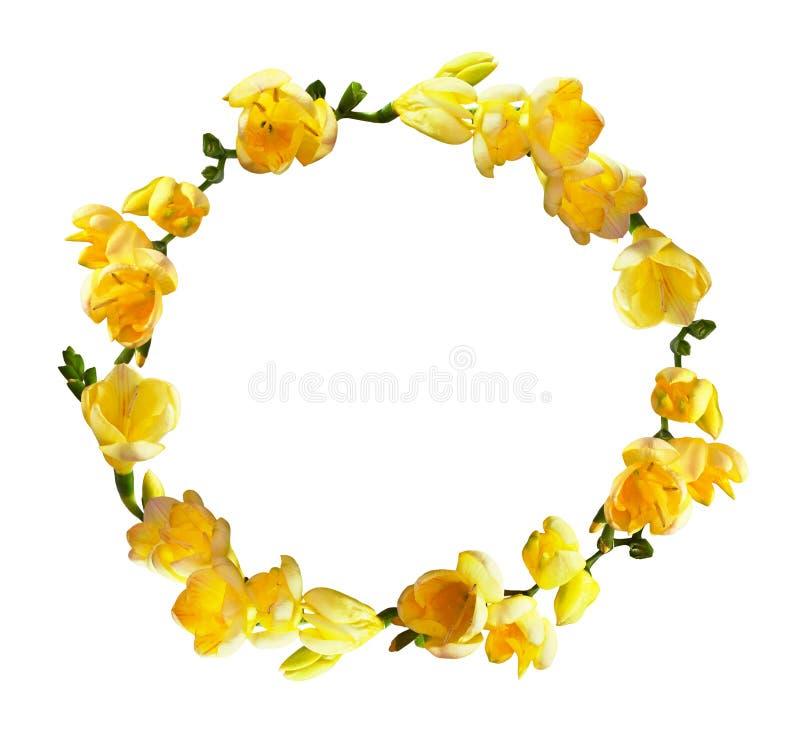 Guirlande ronde avec les fleurs jaunes de freesia image stock