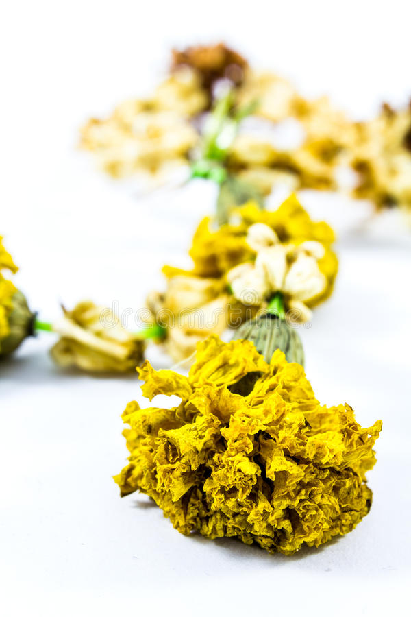 Guirlande sèche en gros plan de jasmin avec des fleurs de calendula image stock