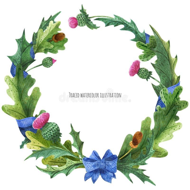 Guirlandes des feuilles de chardon et de chêne avec le ruban en soie bleu illustration stock