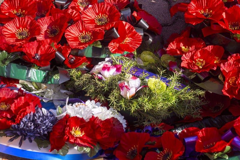 Guirlandes rouges de pavot chez Anzac Memorial photographie stock libre de droits