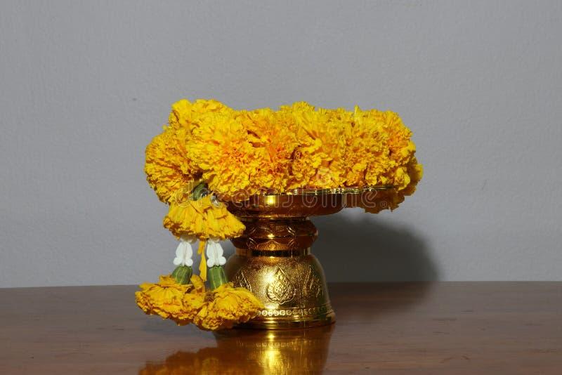Guirnalda amarilla de la flor de la maravilla en color de oro de la bandeja tradicional tailandesa imagenes de archivo