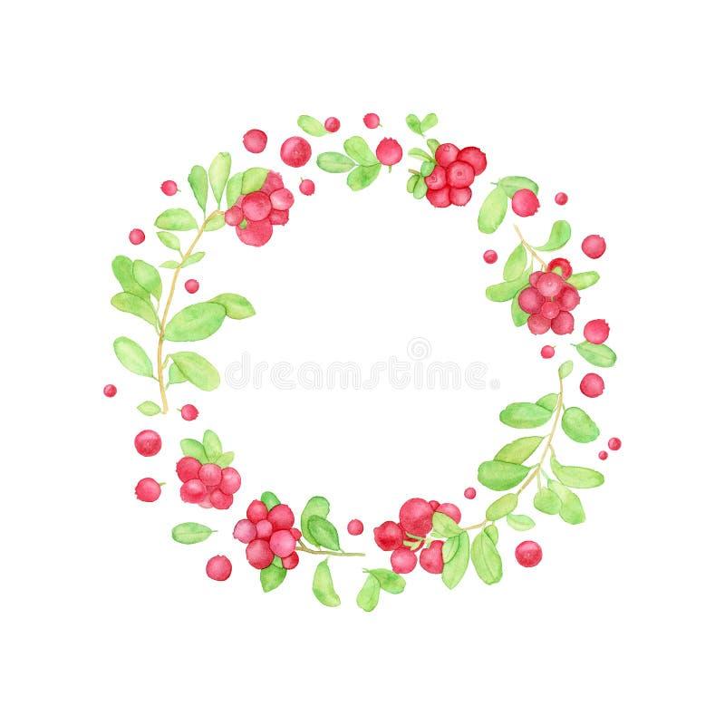 Guirnalda de la baya con el arándano, el arándano o el lingonberry stock de ilustración