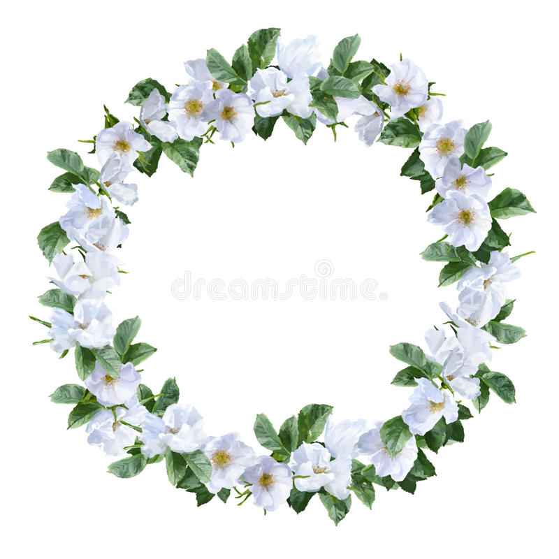 Guirnalda de la flor de la acuarela libre illustration