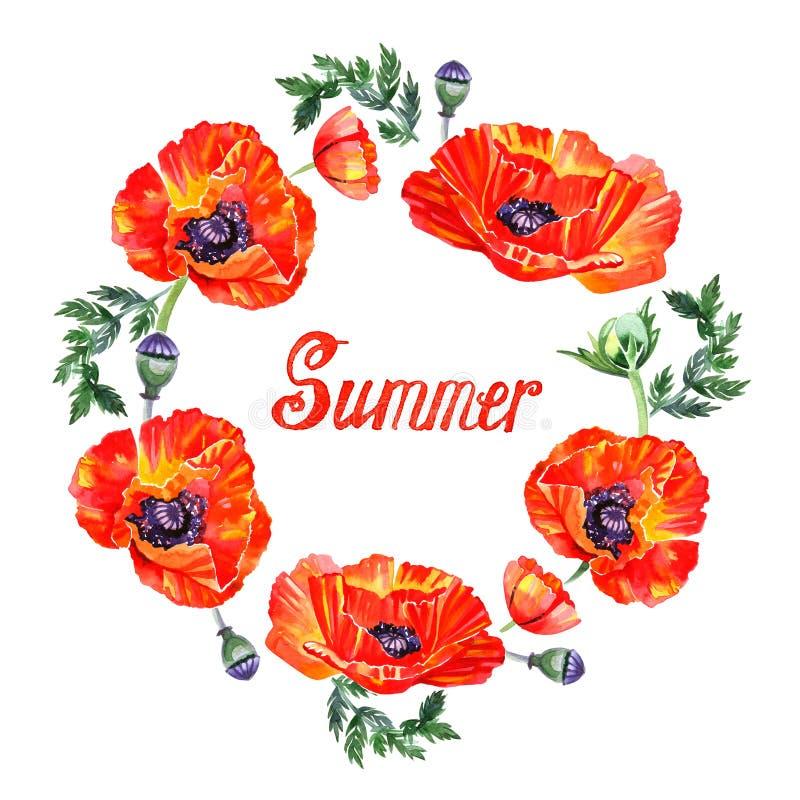 Guirnalda de la flor de la amapola del Wildflower en estilo de la acuarela aislada Letras del verano libre illustration