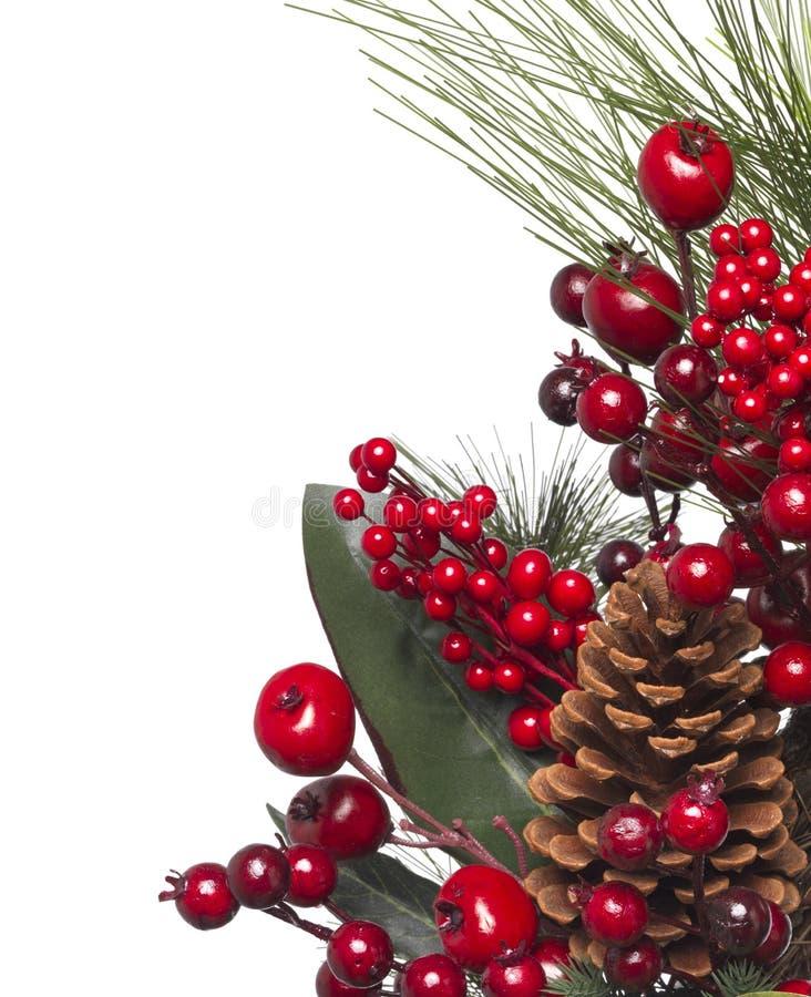 Download Guirnalda de la Navidad imagen de archivo. Imagen de tiro - 44850711