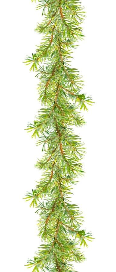 Guirnalda de la Navidad - ramas de árbol de cedro Tira del marco de la acuarela imagen de archivo