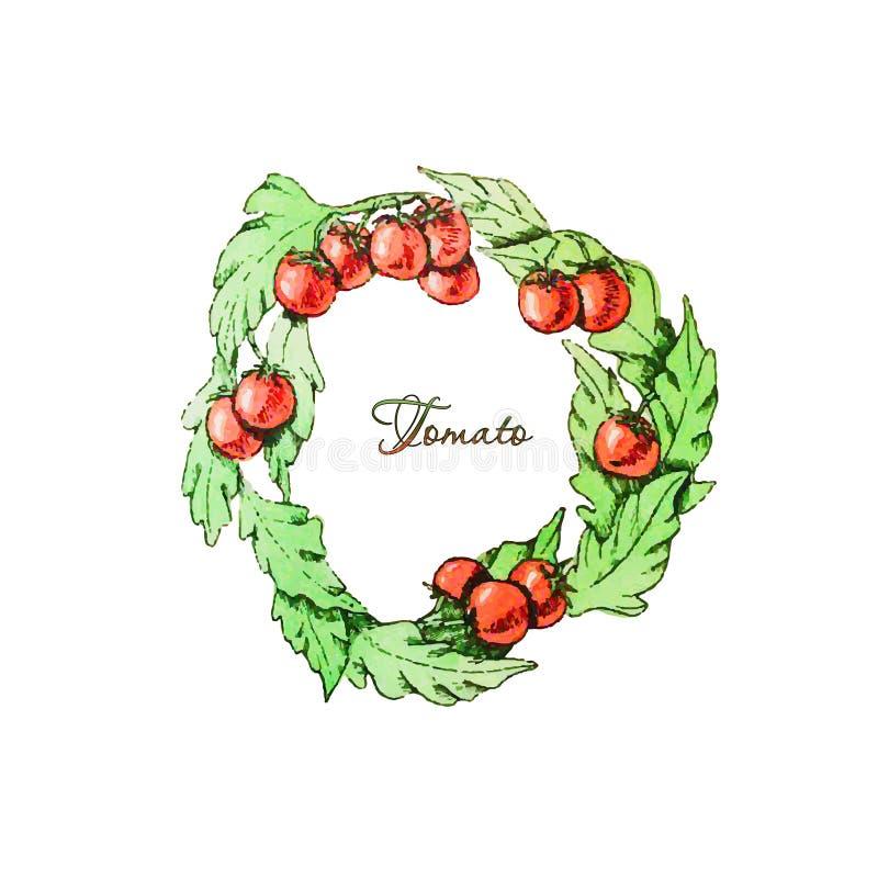 Guirnalda de tomates imagen de archivo