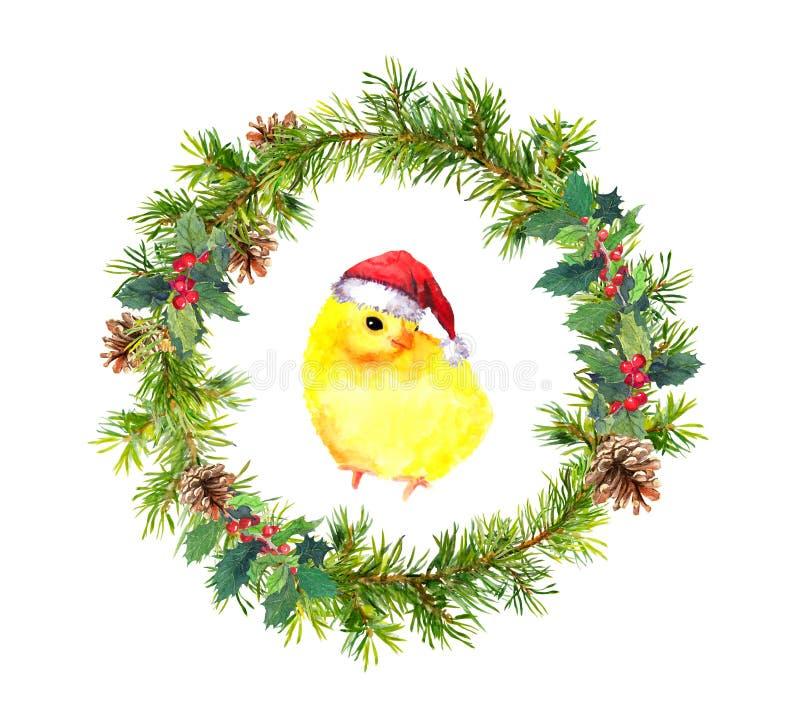 Guirnalda del Año Nuevo, pequeño gallo en sombrero rojo del ` s de santa Pájaro de la acuarela ilustración del vector