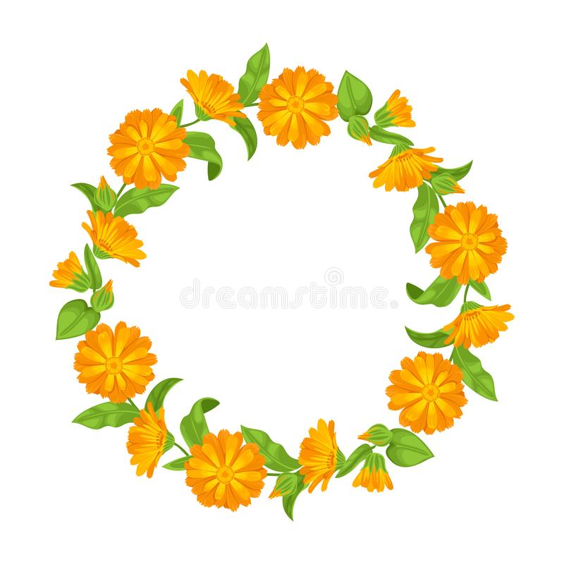 Guirnalda del Calendula con las hojas y las flores libre illustration