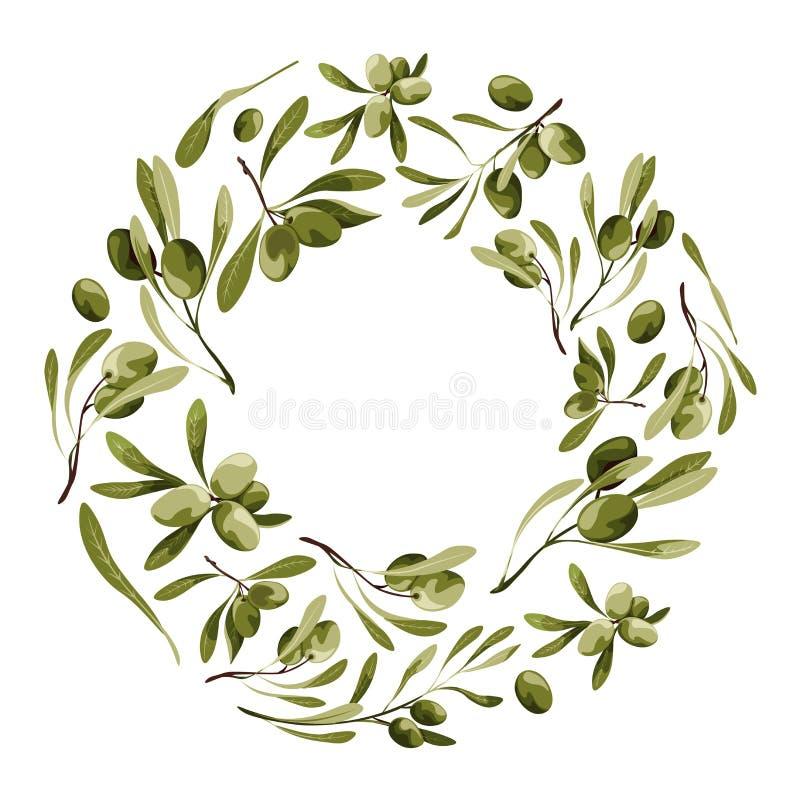 Guirnalda del vector con el olivo Marco de la naturaleza con las verduras con las hojas stock de ilustración