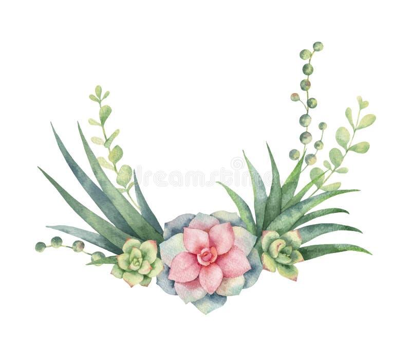 Guirnalda del vector de la acuarela de los cactus y de las plantas suculentas aislados en el fondo blanco stock de ilustración