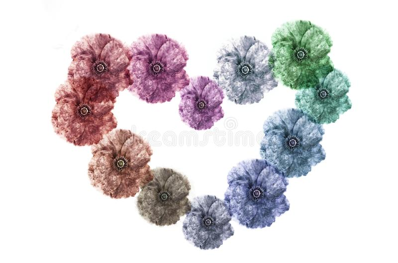 Guirnalda floral foto de archivo libre de regalías