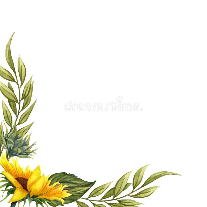 Guirnalda floral de la acuarela con los girasoles, las hojas, el follaje, las ramas, las hojas del helecho y el lugar para su tex libre illustration