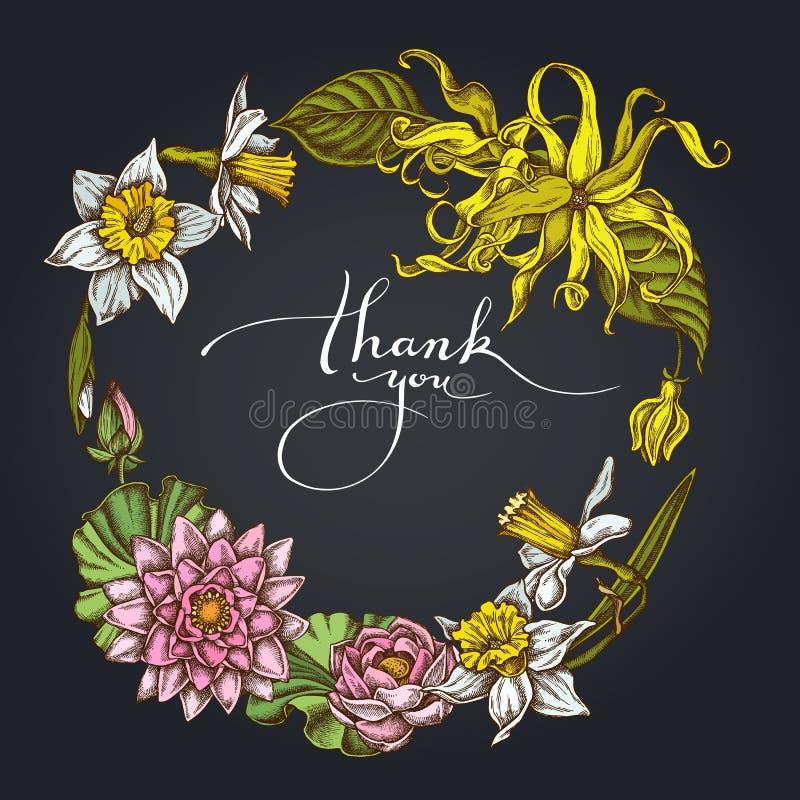 Guirnalda floral oscura del ylang-ylang, narciso, loto ilustración del vector