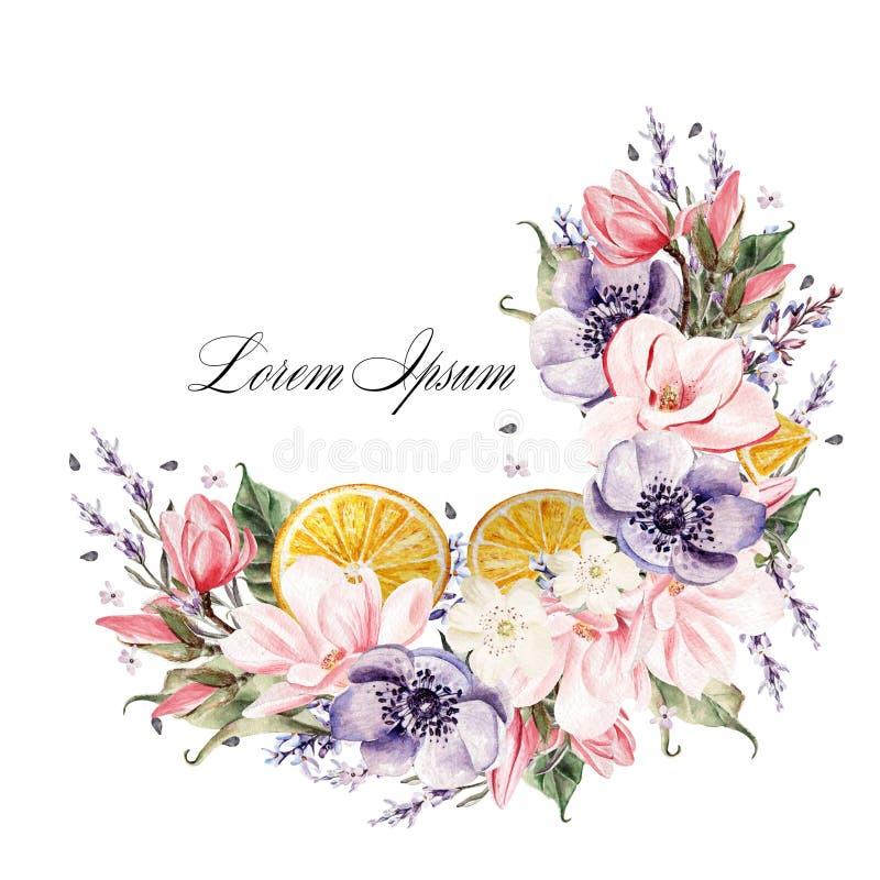 Guirnalda hermosa de la acuarela con las flores de la lavanda, la anémona, la magnolia y las frutas anaranjadas libre illustration