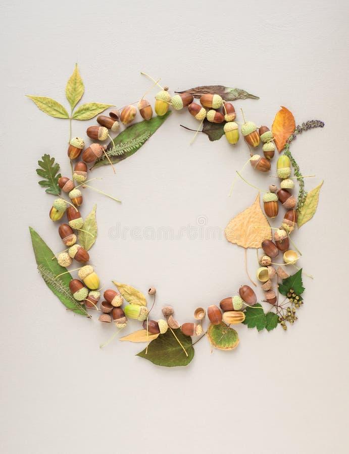 Guirnalda hermosa hecha de bellotas y de diversas hojas clasificadas en un fondo purpúreo claro fotos de archivo
